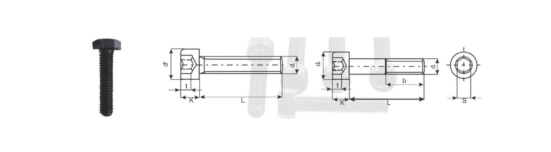 Hex Bolt 8.8/10.9/12.9/(DIN 931/933/ASTM A325/A490)